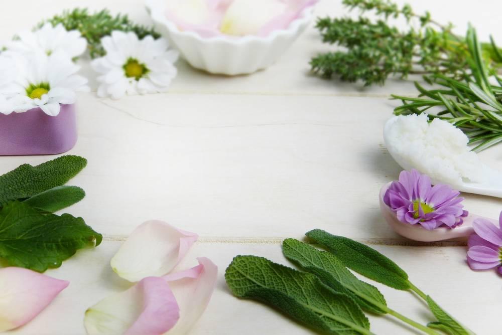 bylinky na pleť